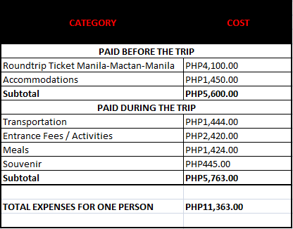 cebu expenses