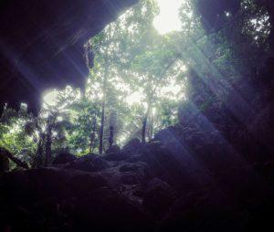 taman negara asia